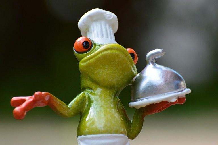 frogie chef.jpg
