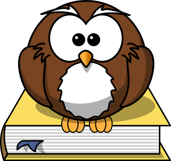 owl on book.png