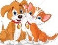 Pets Cat and Dog.jpg