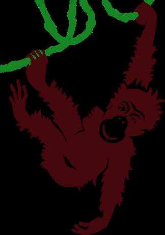 monkey on a vine.png