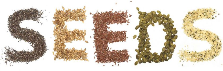 Seeds 2.png