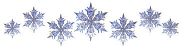 snowflake divider.jpg