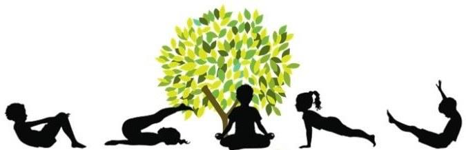 Yoga Tree.jpg